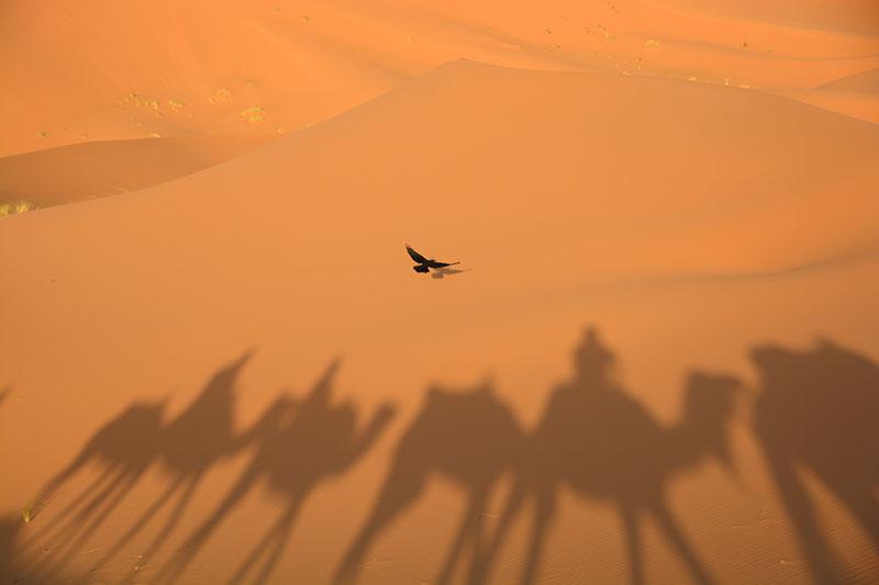 fez-merzouga-boumalne-dades-ait-ben-haddou-marrakech