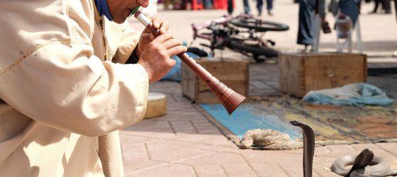 Los aissauas, el origen de los encantadores de serpientes